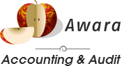 Accounting, Audit & Tax Complience Services